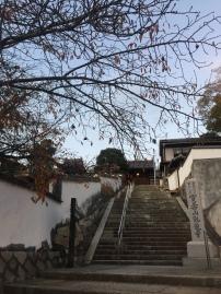 Kurashiki, Okayama Japan.